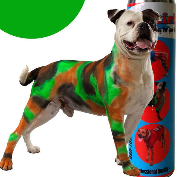 Spray Chalk 6 Oz White Non Toxic Colorants