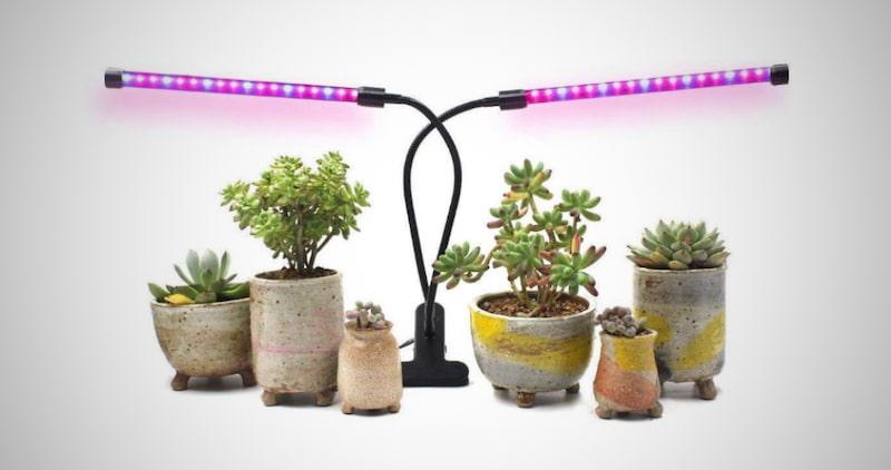 Dual Head Plant Grow Lights