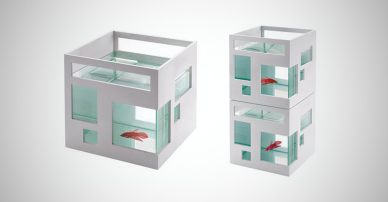 Unique FishHotel for New Home