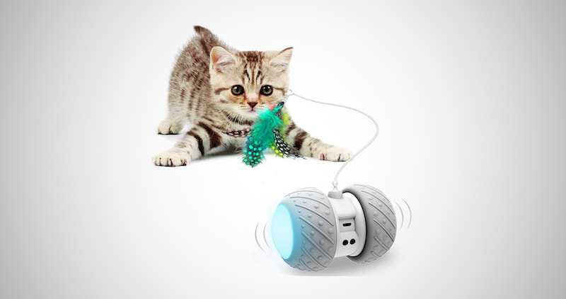 Interactive Self Rotating Toy
