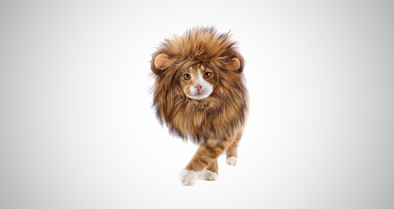 Lion Wig with Ears