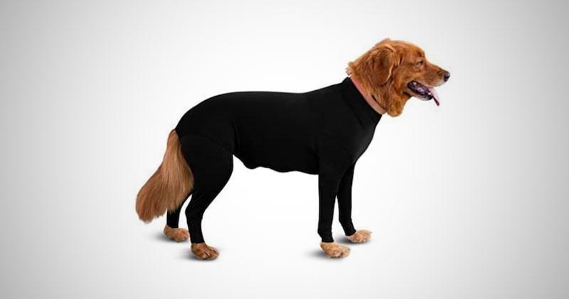 Original Dog Onesie