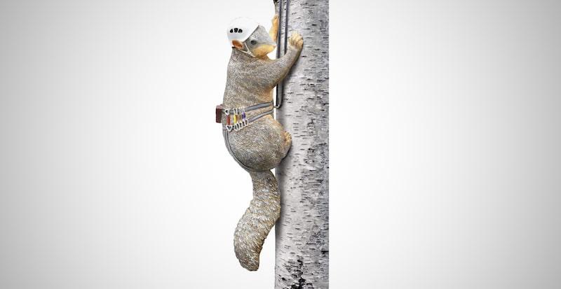 Squirrel Tree Climber Sculpture