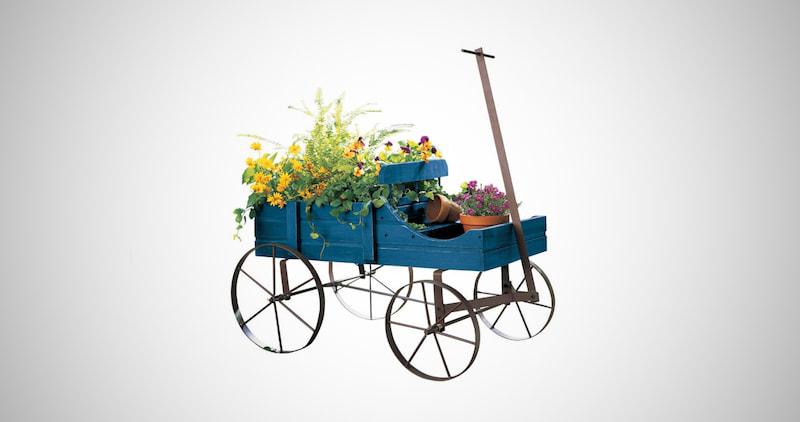 Garden Backyard Planter
