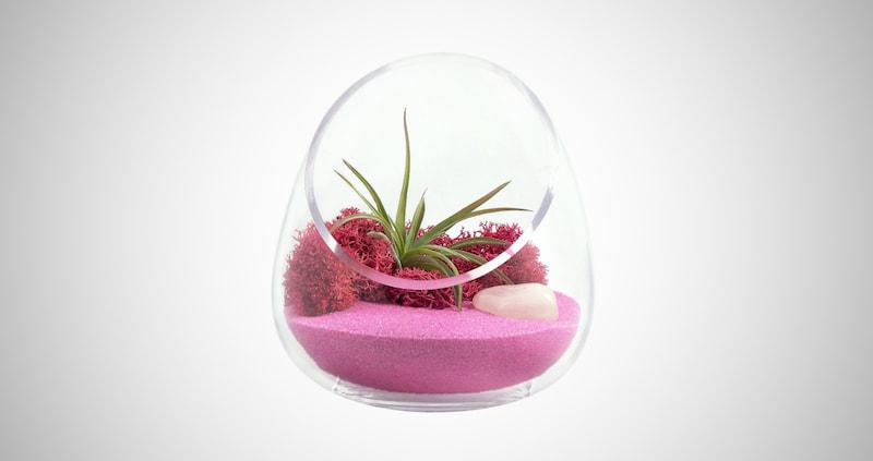 Zen Crystal Gem Cut Glass Terrarium