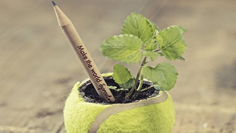 Eco-Friendly Plantable Graphite Pencils