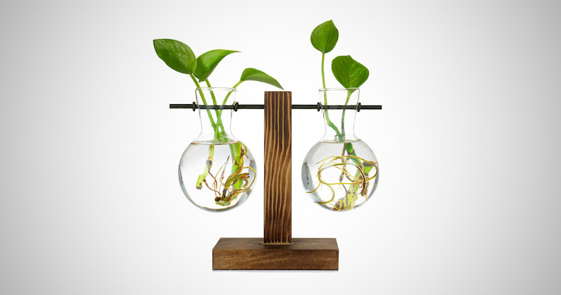 Desktop Plant Terrarium Bulb Vase