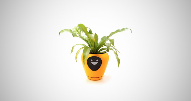 Smart Planter With Feelings