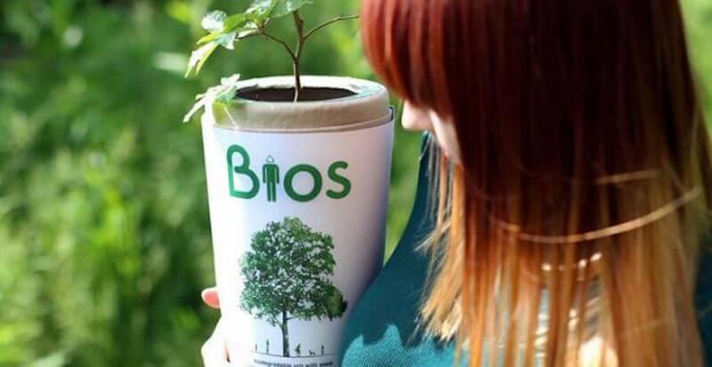Bios Biodegradable Cremation Urn for Humans