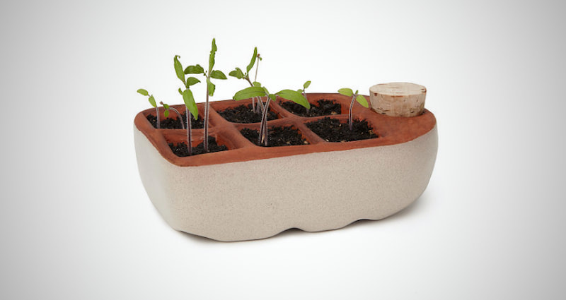 Self Watering Peat Pots
