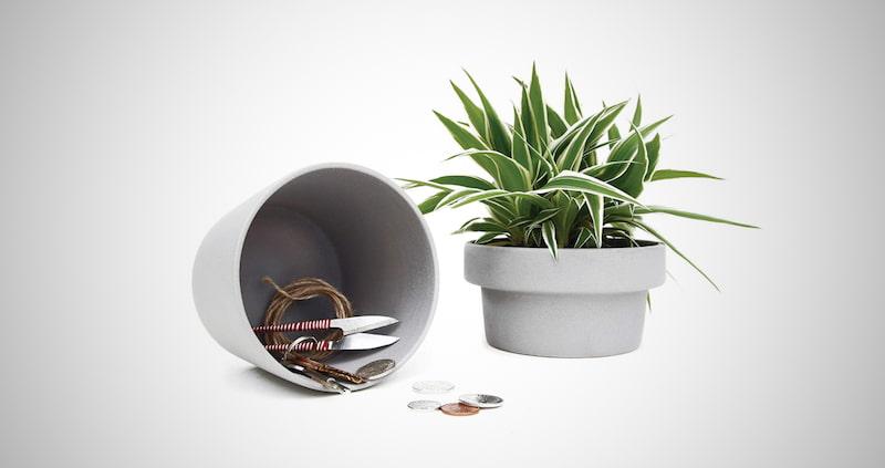 Secret Stash Box Succulent Plants