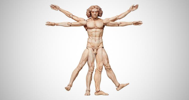 The Vitruvian Man Figma Action Figure