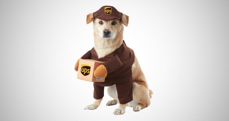 Ups Pal Dog Costume Costume