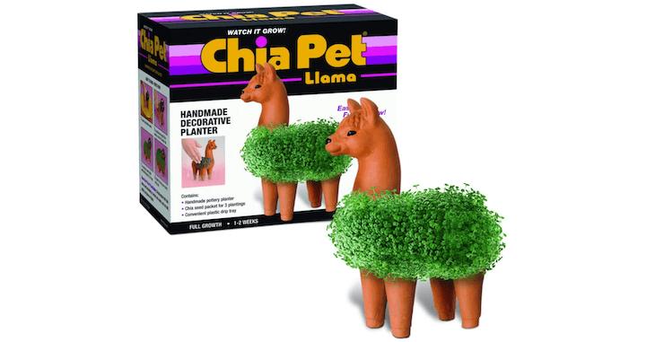 Pet Llama Pottery Planter