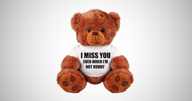 Funny Stuffed Teddy Bear