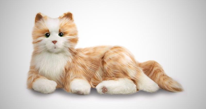 Orange Interactive Companion Tabby Cat