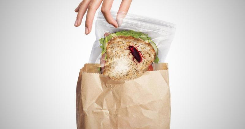 Lunch Bugs Zipper Sandwich Bags