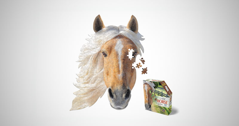 I AM Horse Puzzles