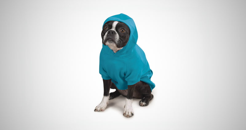 Basic Hoodie for Dogs
