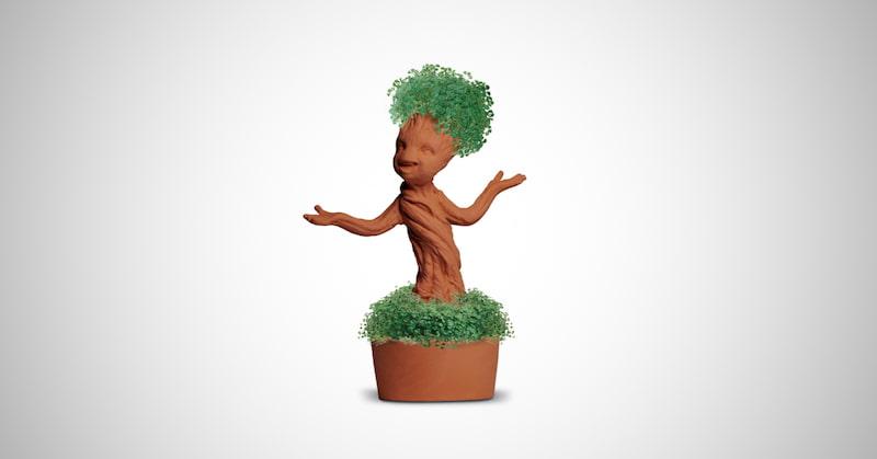 Chia Groot Pottery Planter