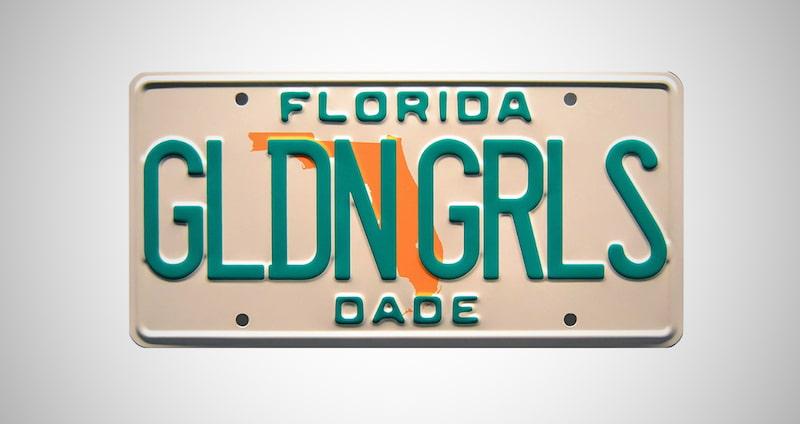 Metal Stamped License Plate