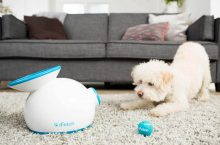 Automatic Dog Ball Thrower
